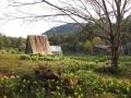Kailash hut in spring