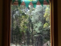Window in Rinpoche's house